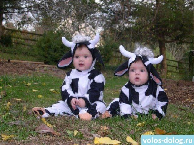 как правильно воспитать близнецов
